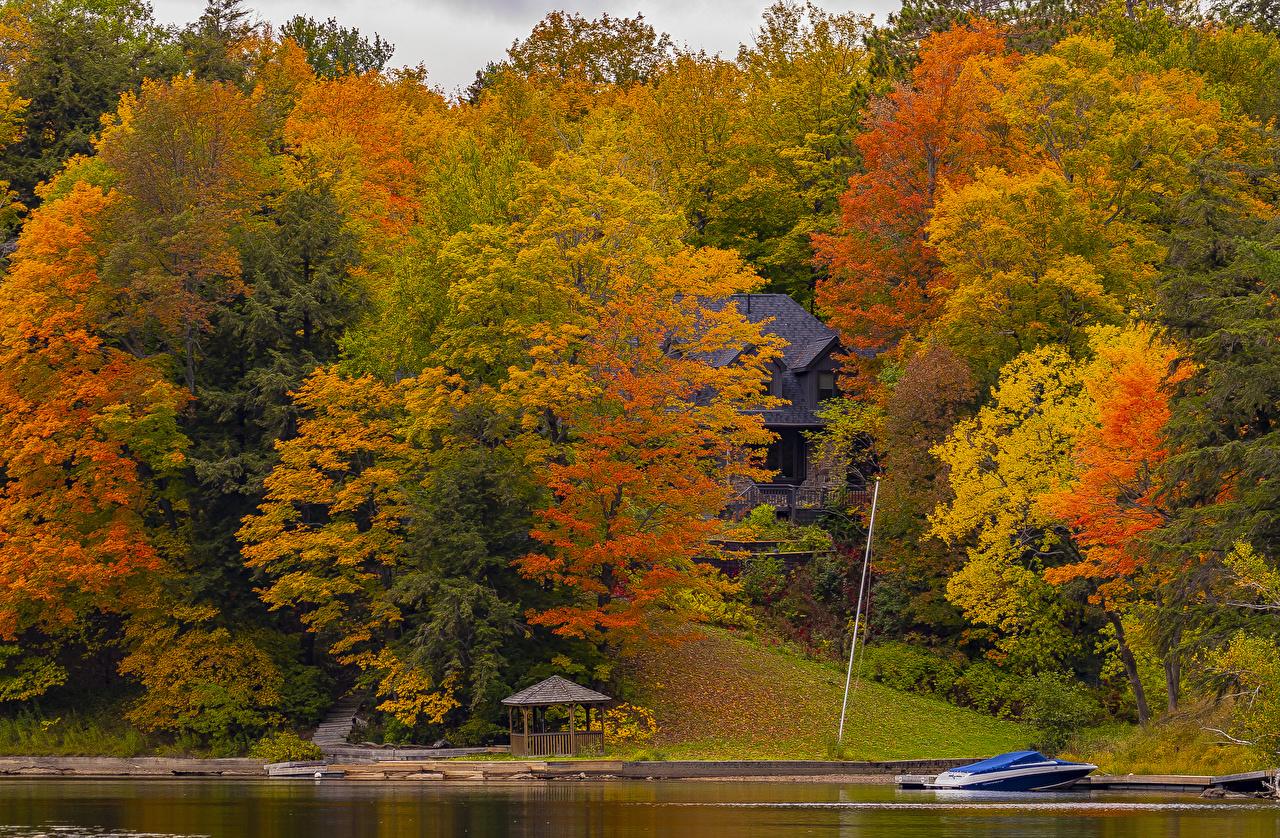 Фото Канада Huntsville, Ontario Разноцветные осенние Природа Парки Причалы Дома дерева Осень парк Пирсы Пристань Здания дерево Деревья деревьев