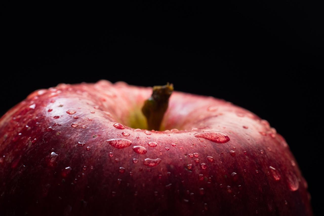 Фотографии Капли Макро Яблоки Продукты питания вблизи Черный фон Макросъёмка Еда Пища Крупным планом
