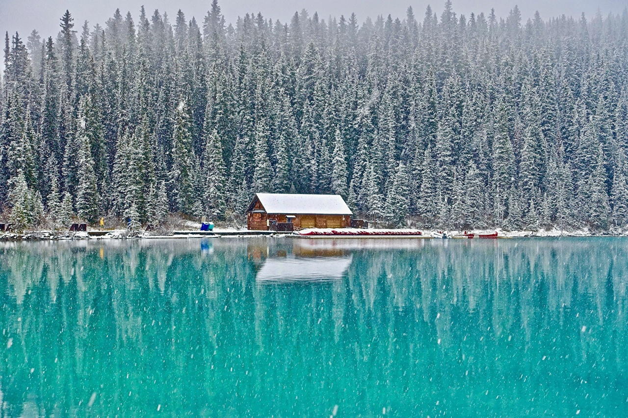 Фото Банф Канада Lake Louise, Alberta Природа лес снегу Озеро Парки Здания Снег Леса парк снеге снега Дома