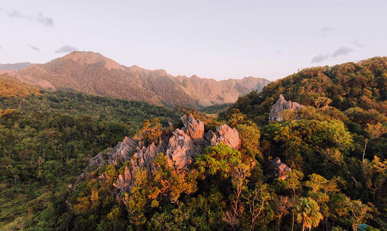 Фото Филиппины Igbaklag Cave Antique Горы Природа Леса гора лес