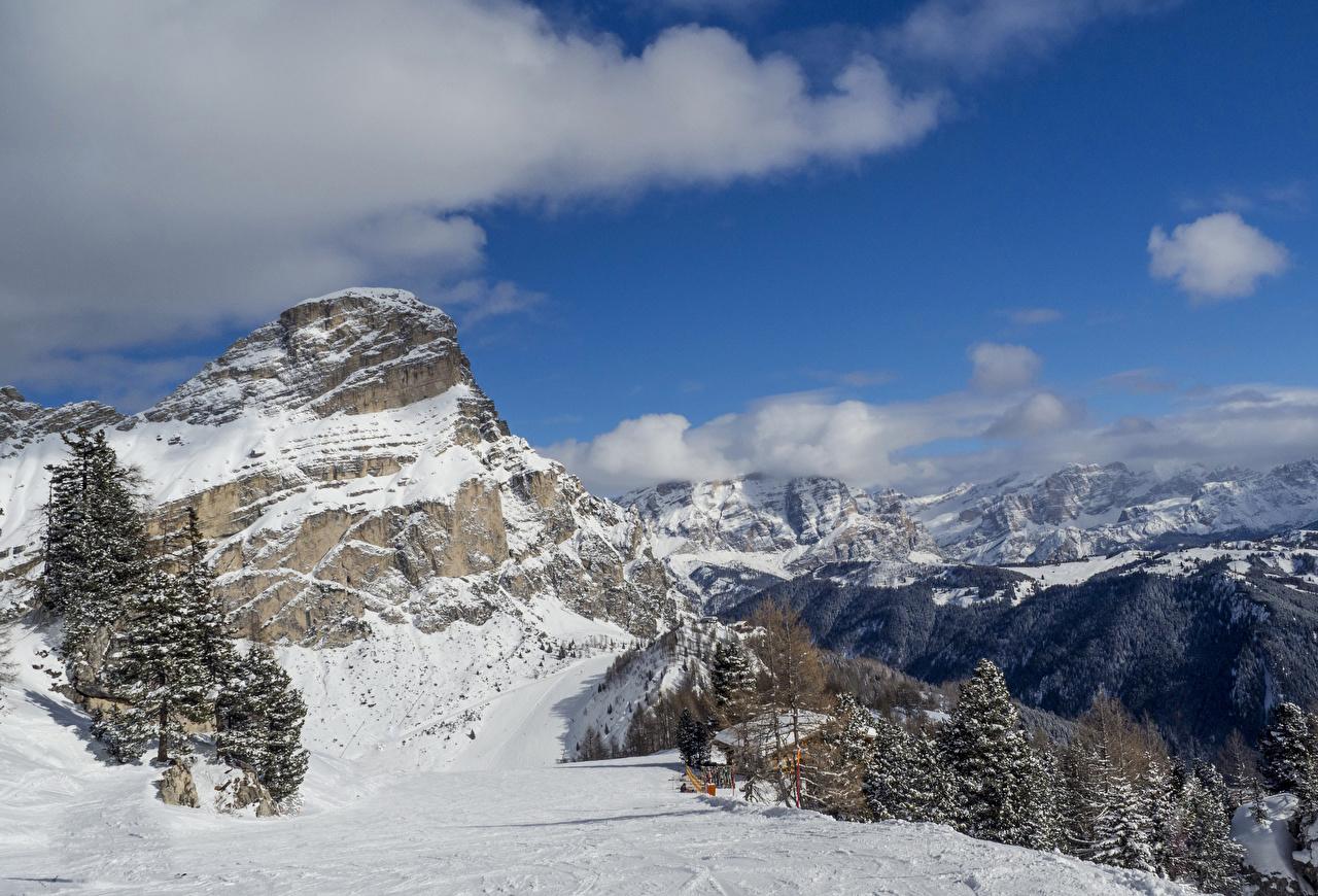 Обои Альпы Италия Alta Badia Ель Зима Горы Природа Снег зимние