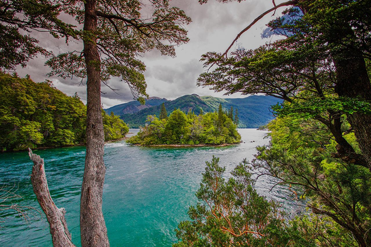 Фотография Аргентина Chubut Patagonia Горы Природа Остров Залив деревьев гора залива заливы дерево дерева Деревья
