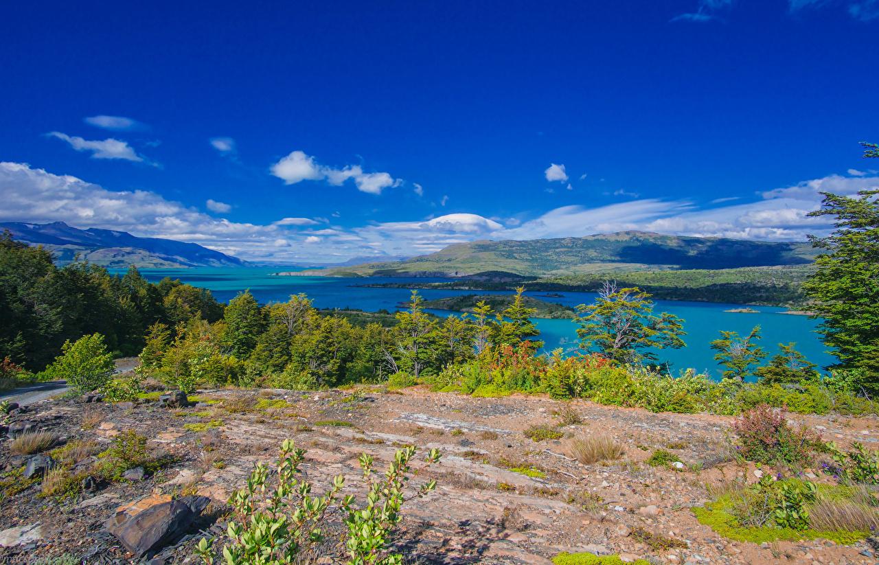 Картинка Чили Ultima Esperanza Patagonia Природа холм Озеро берег Кусты Холмы холмов Побережье кустов