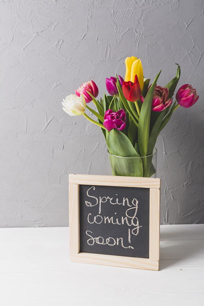 Обои Английский Букеты Тюльпаны Цветы