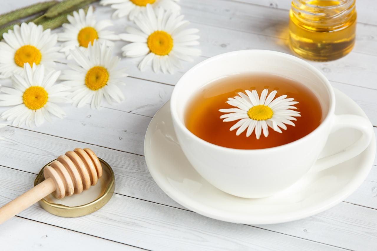 Фото Чай Ромашки чашке блюдца Продукты питания ромашка Еда Пища Чашка Блюдце