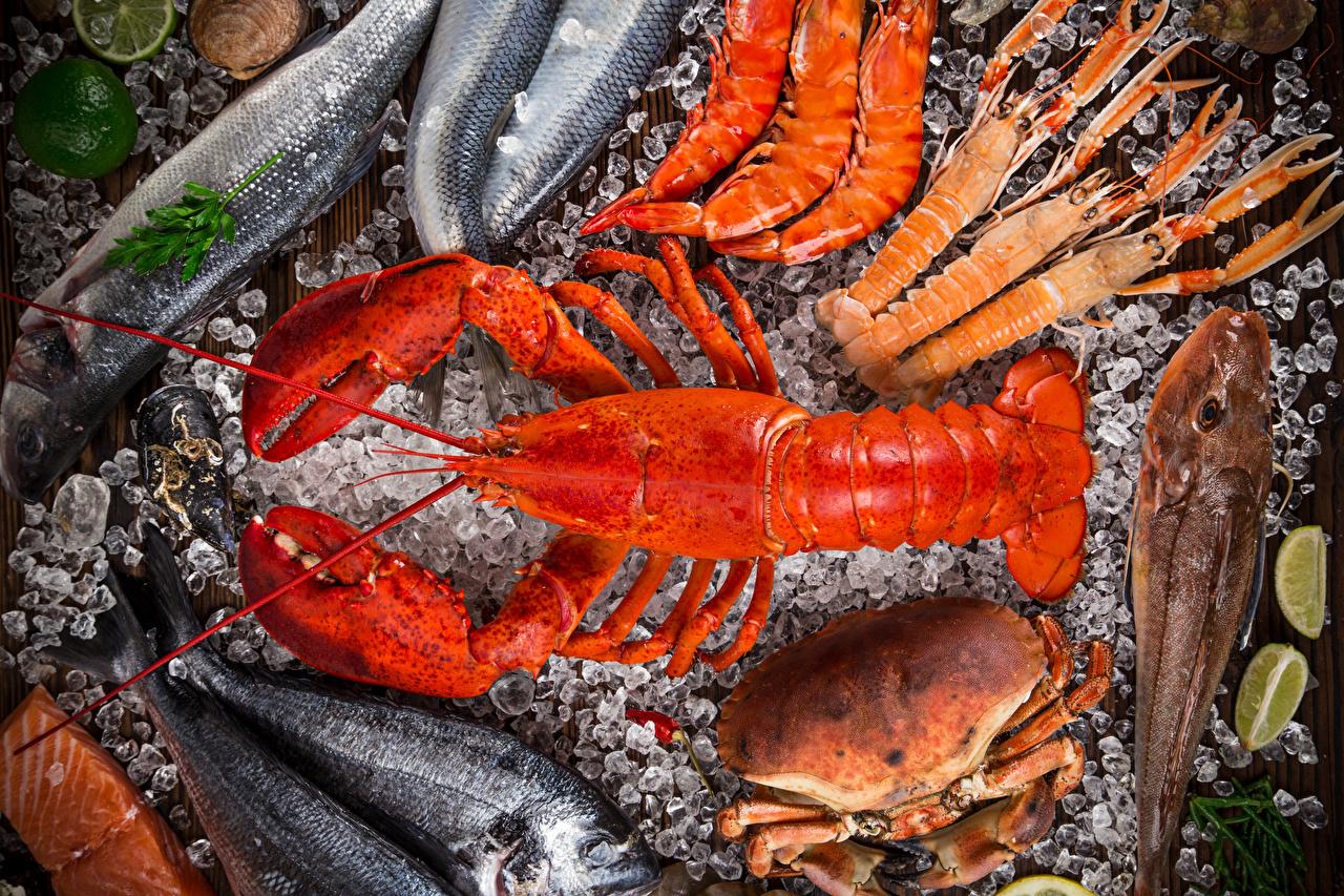 Картинка Омары Раки Рыба Крабы Еда Морепродукты Пища Продукты питания