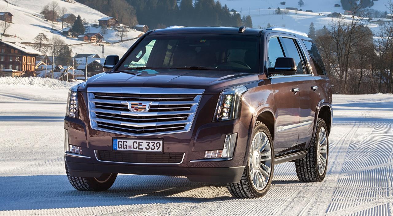 Обои для рабочего стола Cadillac SUV Escalade, Platinum, EU-spec, 2015 машины Спереди Кадиллак Внедорожник авто машина Автомобили автомобиль