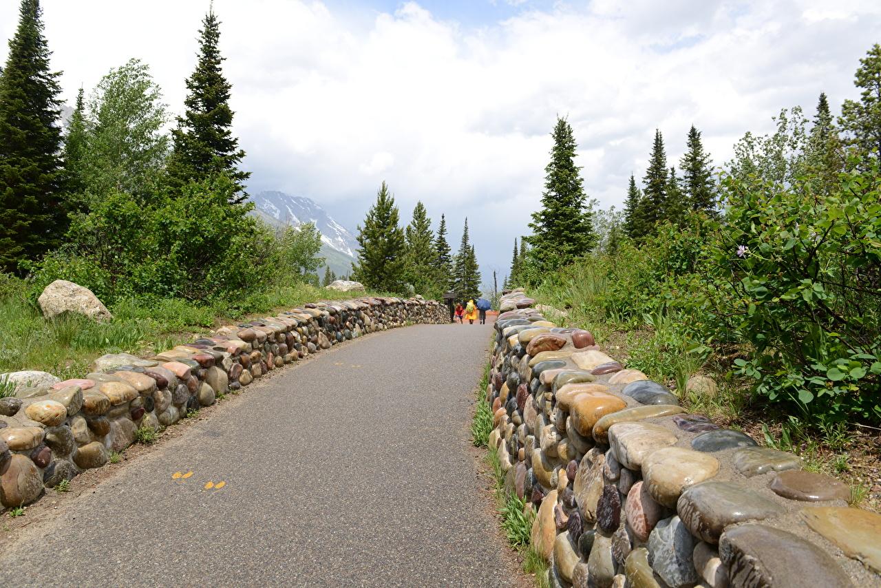 Фотография США Wyoming, Grand Teton National Park осенние Природа Прогулка Парки Камни штаты идет Осень гуляет Камень