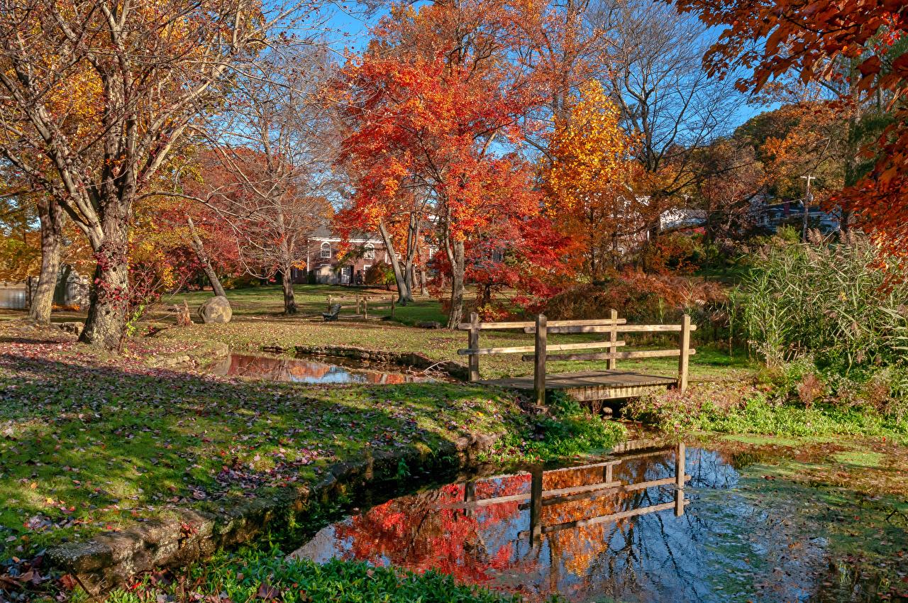 Картинка Нью-Йорк америка Gerry Park Roslyn мост осенние Природа Пруд Парки деревьев США штаты Осень Мосты парк дерево дерева Деревья