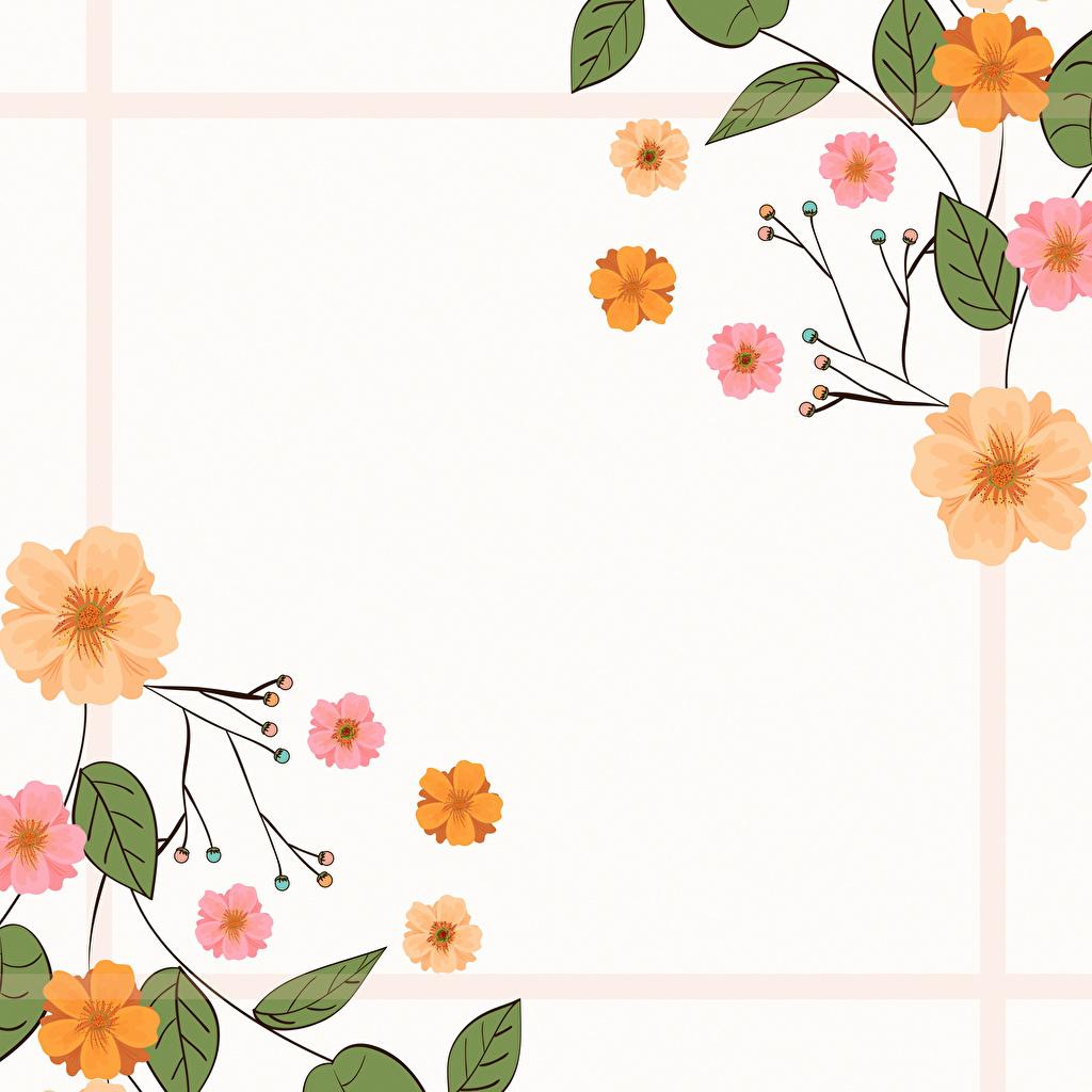 Фотографии лист цветок Шаблон поздравительной открытки Рисованные Листва Листья Цветы