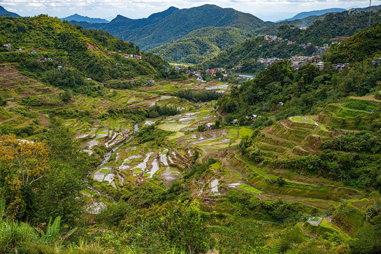 Фото Филиппины Banaue rice terraces, Ifugao гора Природа Поля Деревья Горы дерево дерева деревьев