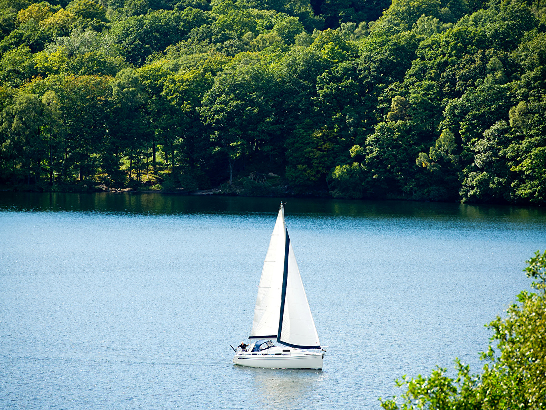 Фото Природа Леса Реки Лодки Парусные лес река речка