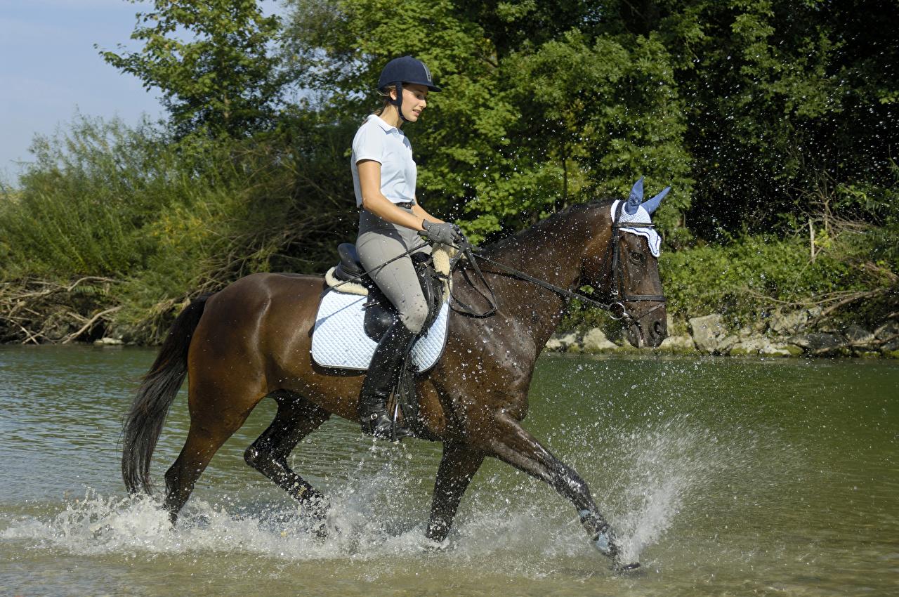 Фото Лошади Девушки спортивные Конный спорт Брызги Вода лошадь Спорт девушка спортивная спортивный верховая езда молодая женщина молодые женщины с брызгами воде