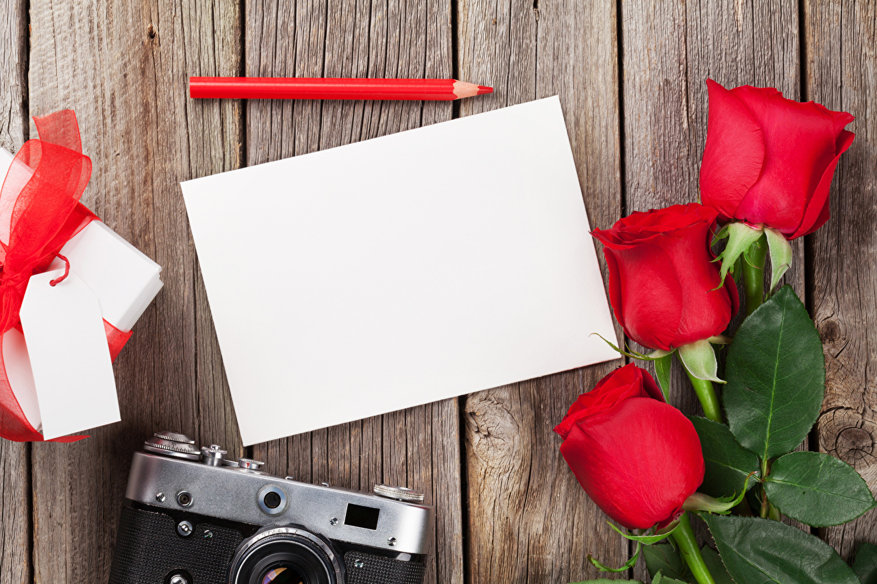 Обои Карандаши Лист бумаги Розы Цветы Трое 3 Шаблон поздравительной открытки Праздники Доски втроем
