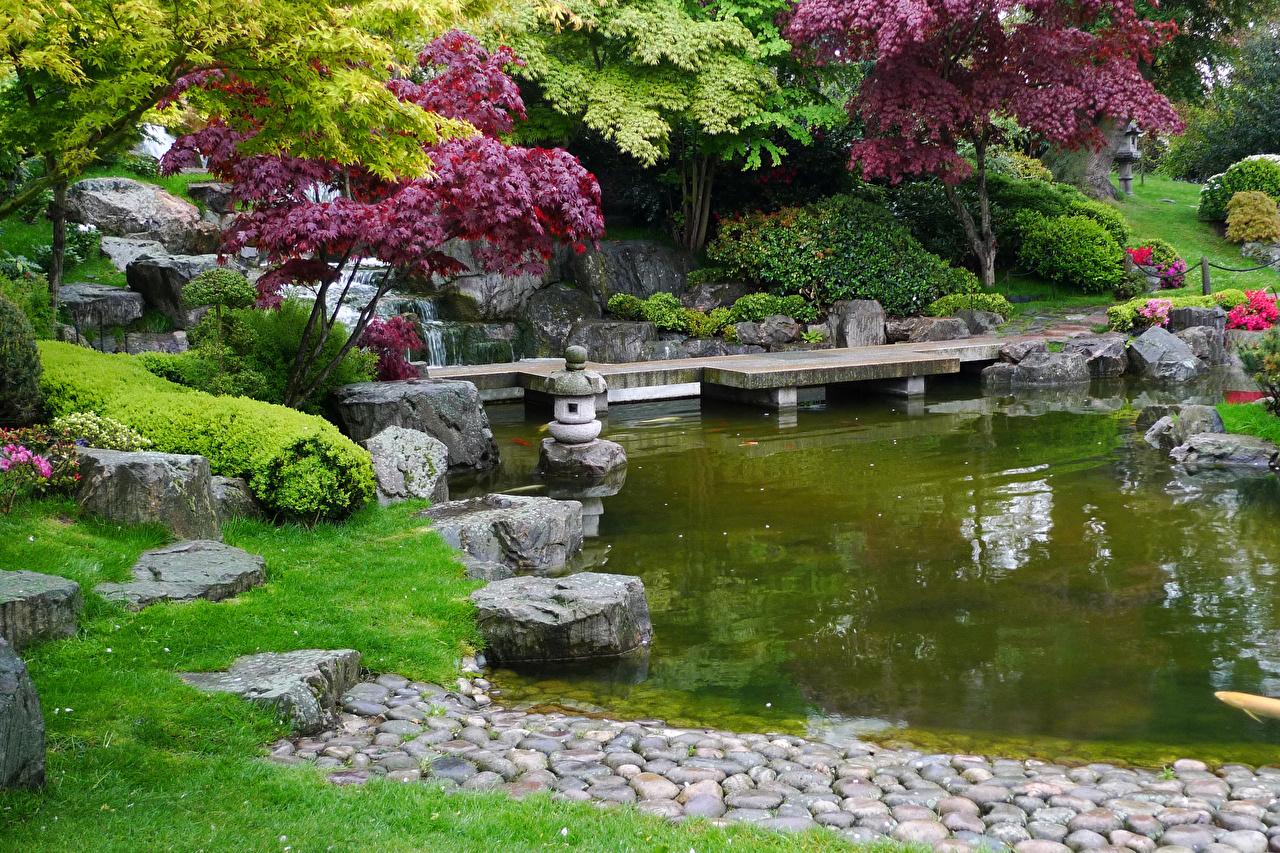 Фотография лондоне Великобритания Holland Park Природа Пруд Парки Камни Кусты дерева Лондон парк Камень кустов дерево Деревья деревьев