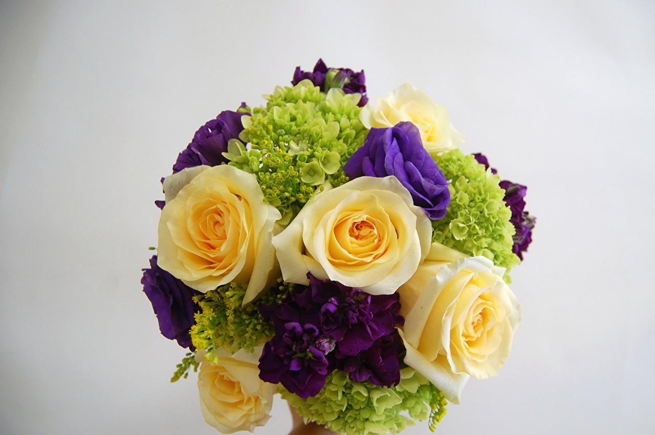 Обои Букеты Розы Цветы Маттиола Лизантус Гортензия Серый фон Левкой Эустома