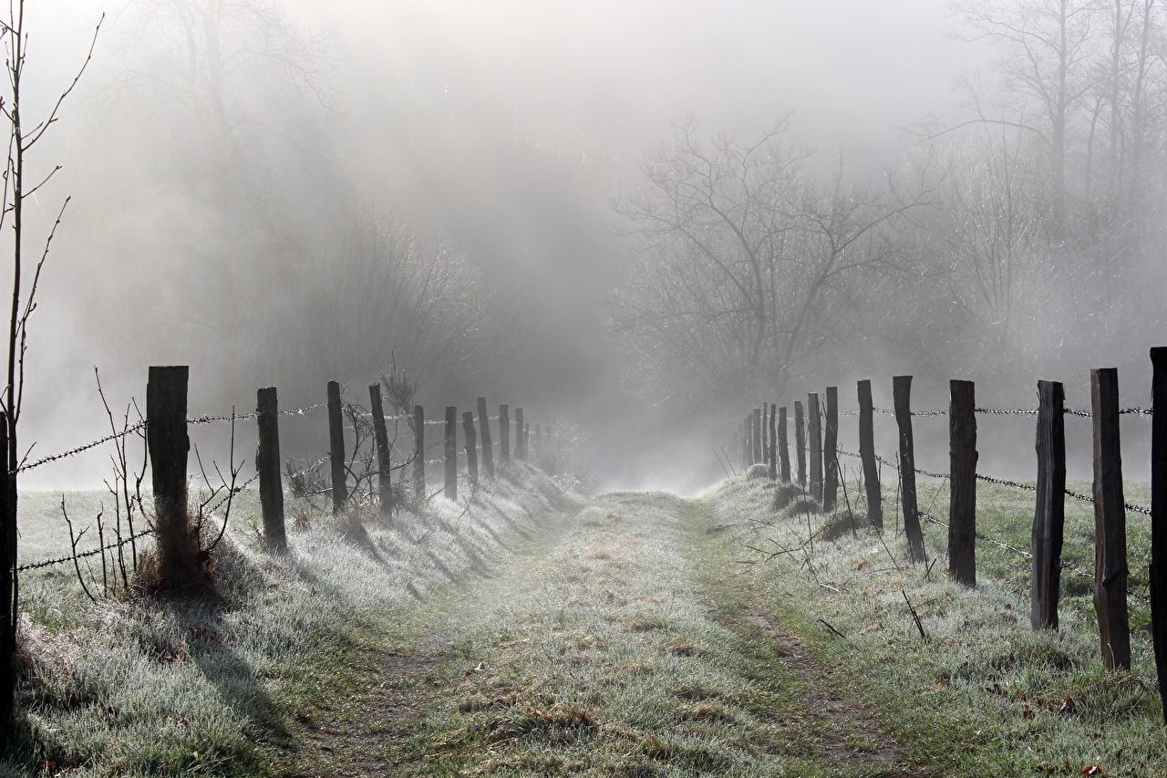 Фотография тумане Природа ограда Дороги Трава Туман тумана Забор забора забором траве