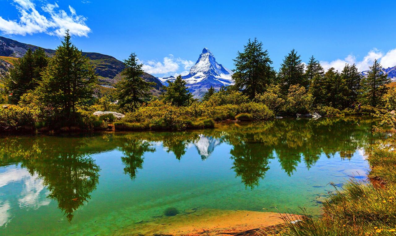 Обои Альпы Швейцария Zermatt Ель Горы Природа Озеро Кусты