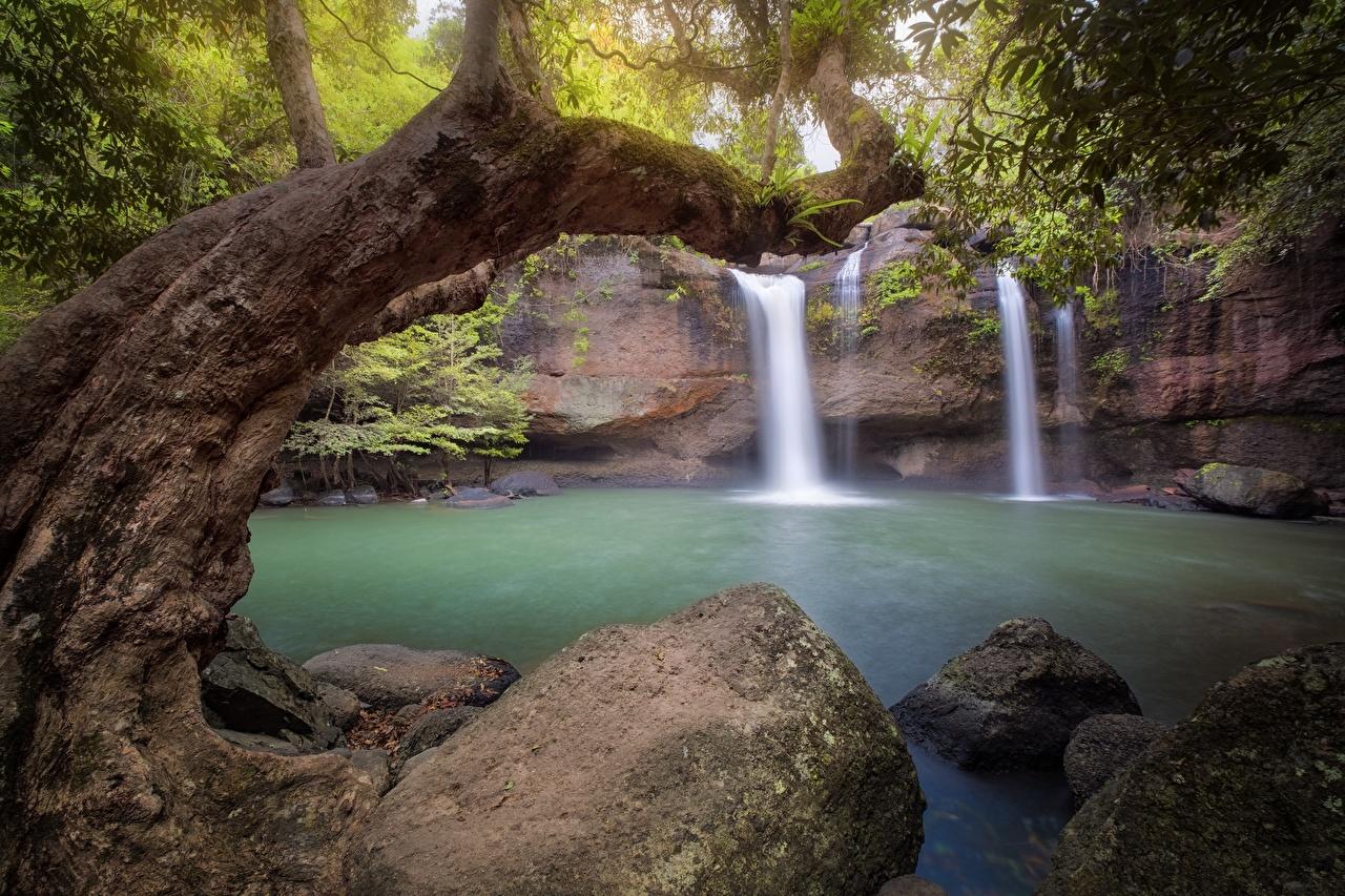 Фотографии Природа Водопады Камни деревьев Камень дерево дерева Деревья