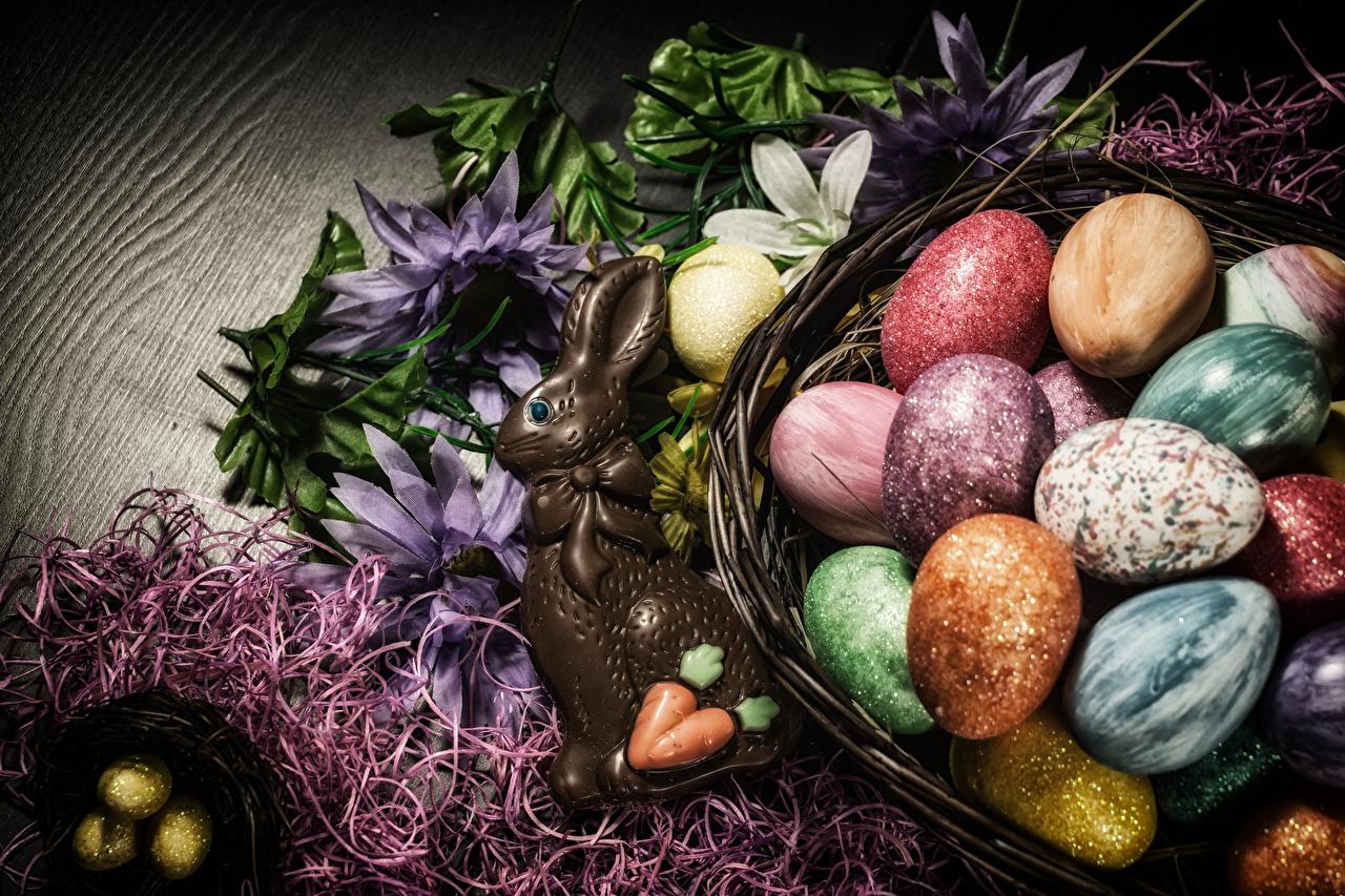 Картинка Пасха кролик Яйца Шоколад Продукты питания сладкая еда Кролики яиц яйцо яйцами Еда Пища Сладости