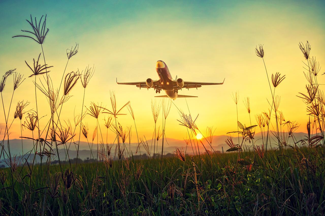Фотографии Самолеты Пассажирские Самолеты взлетают Солнце Природа рассвет и закат траве Авиация Взлет взлетает солнца Рассветы и закаты Трава