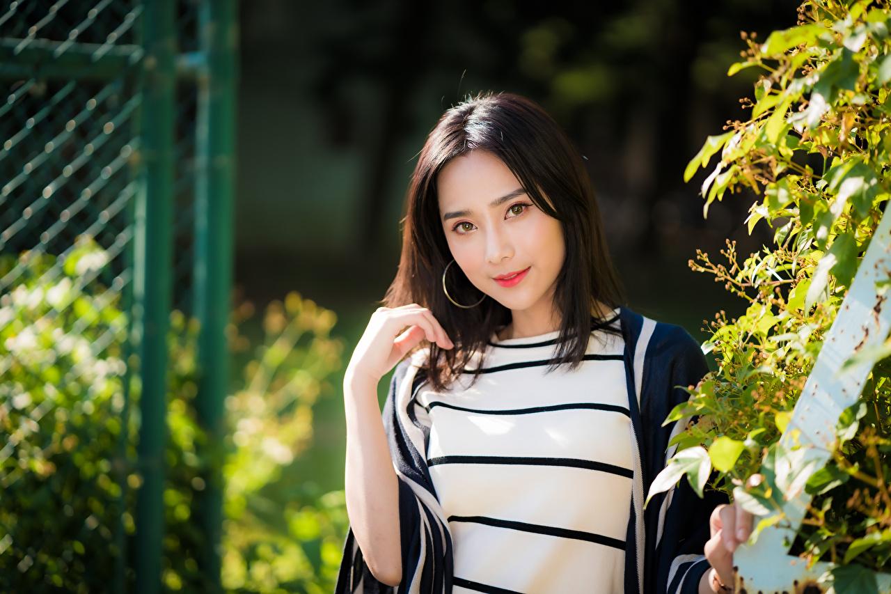 Картинки Брюнетка Размытый фон Девушки Азиаты смотрит брюнетки брюнеток боке девушка молодая женщина молодые женщины азиатки азиатка Взгляд смотрят