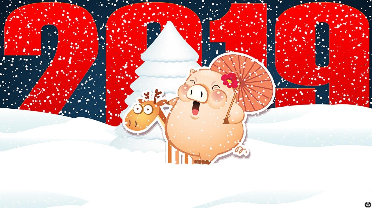 Фотографии 2019 Новый год снеге Рождество Снег снегу снега