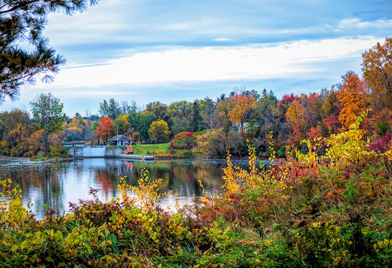 Обои для рабочего стола Канада Canmore Alberta Осень Природа Реки Кусты деревьев осенние река речка дерева дерево кустов Деревья