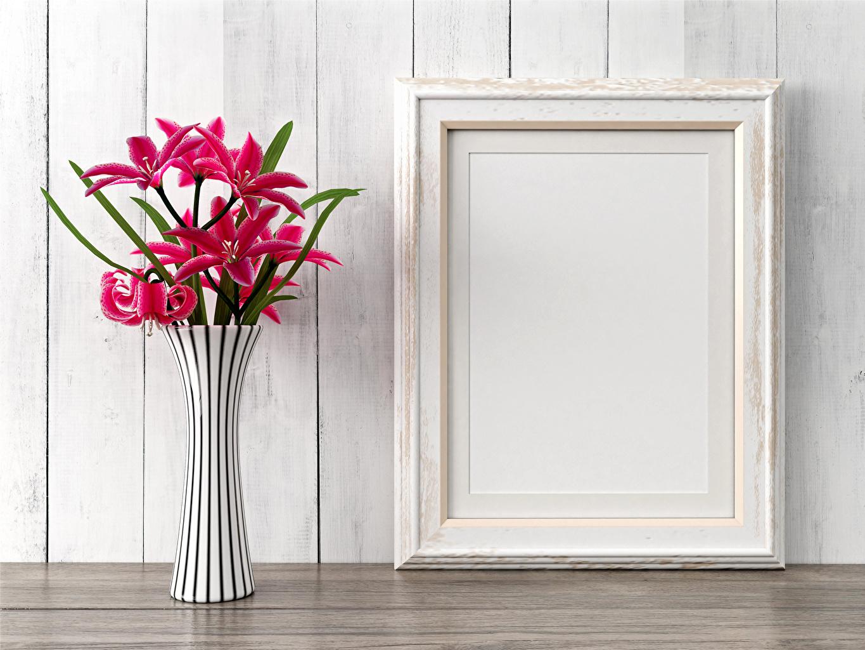 Фотография лилия Розовый Цветы вазе Стена Лилии розовых розовая розовые цветок вазы Ваза стене стены стенка