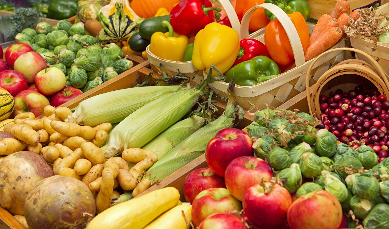 Фотография Кукуруза Картофель Яблоки Еда Перец Овощи Фрукты картошка Пища перец овощной Продукты питания