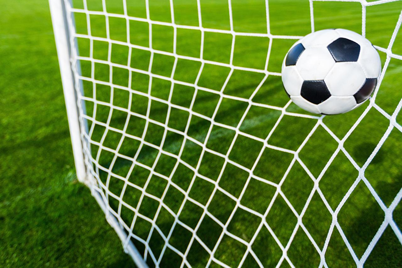 Фотография Сетка Футбол спортивные Мяч спортивная сетка Спорт спортивная спортивный Мячик