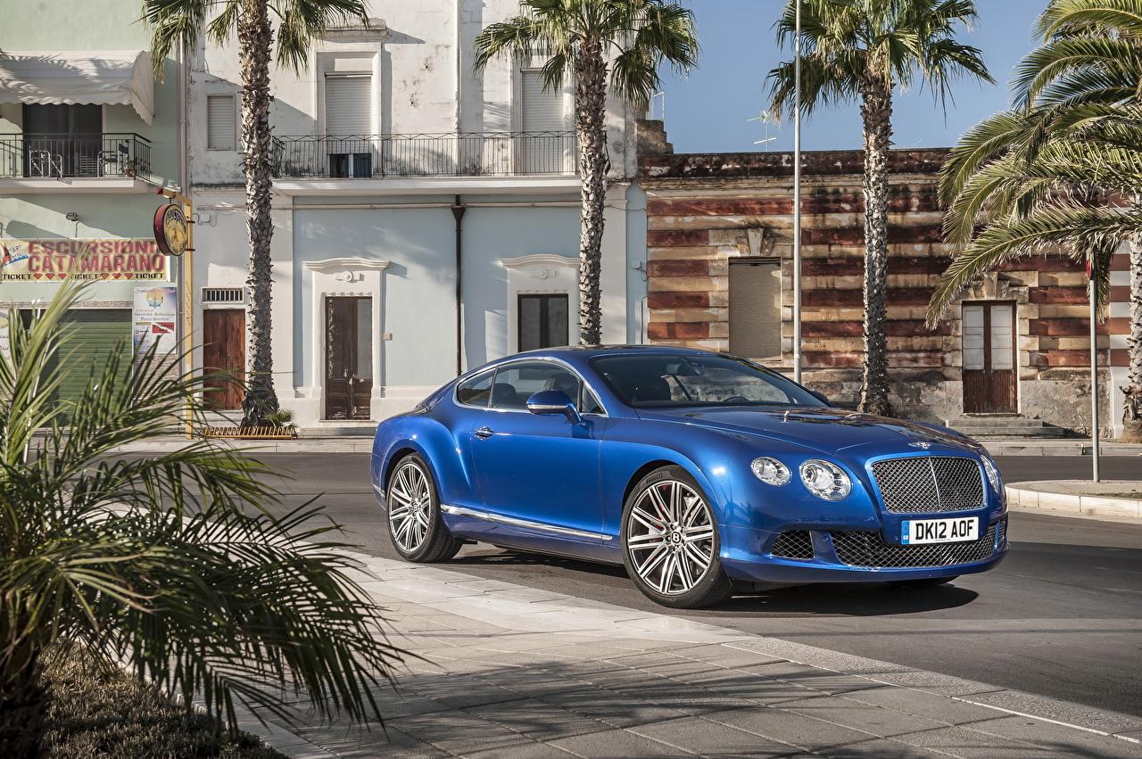 Фотография Бентли 2012 Continental GT Speed дорогие синих пальма фар авто Города Bentley дорогая дорогой люксовые роскошная роскошный Роскошные Синий синие синяя пальм Пальмы Фары машина машины автомобиль Автомобили город