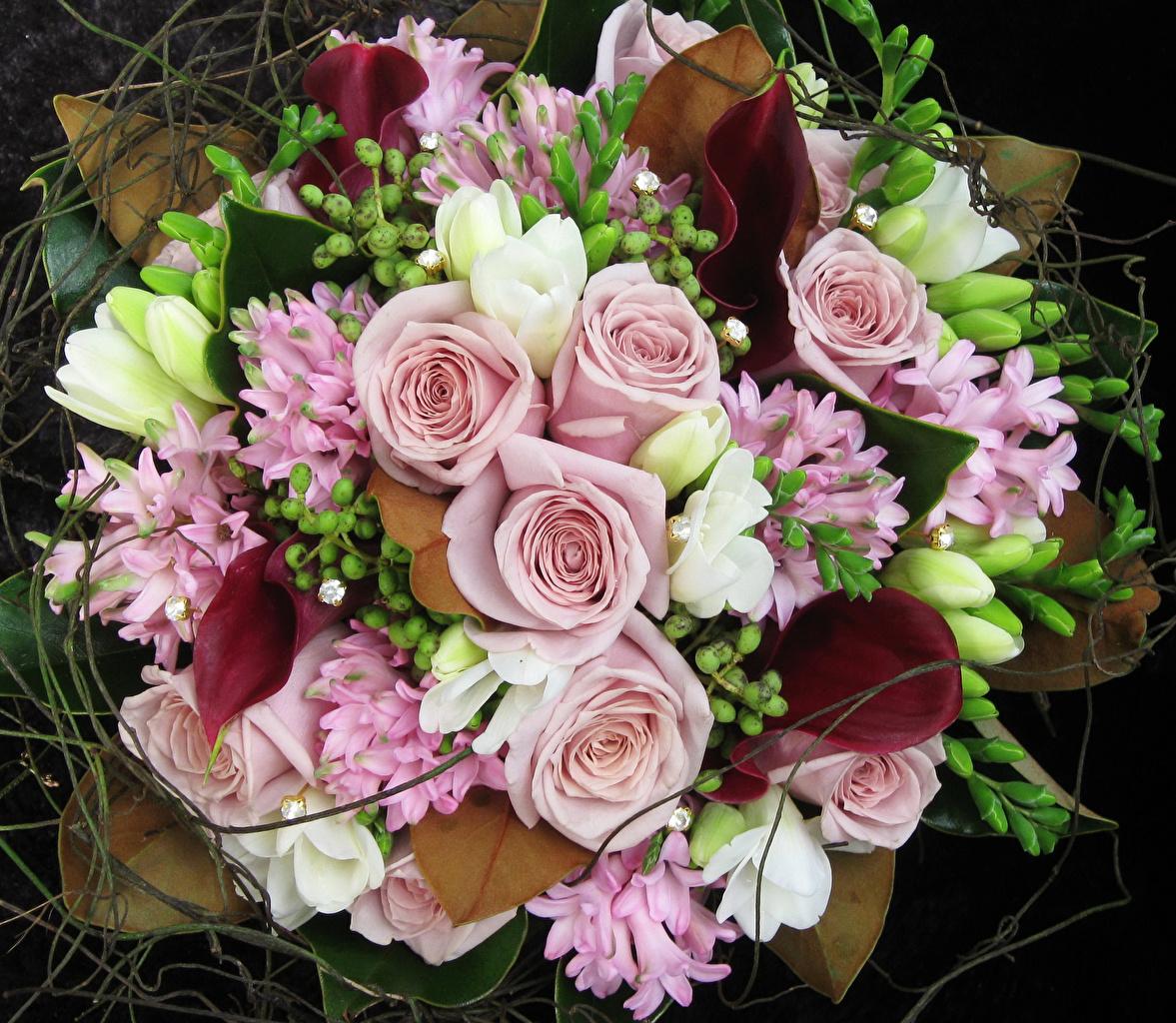 Фотография Букеты Розы белокрыльник Цветы Фрезия Гиацинты букет роза Каллы цветок