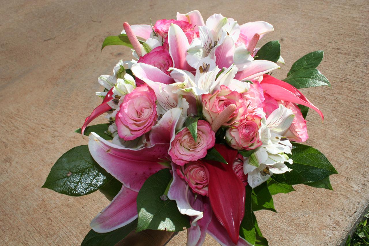 Картинки Букеты роза Лилии цветок Альстрёмерия букет Розы лилия Цветы