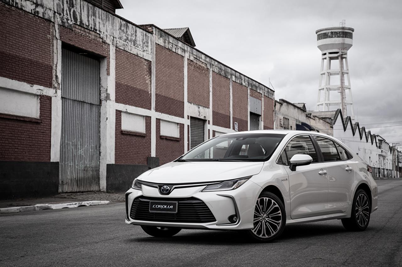 Фотографии Toyota 2019 Corolla Altis Hybrid Sedan Latam Белый машина Металлик Тойота белых белые белая авто машины автомобиль Автомобили