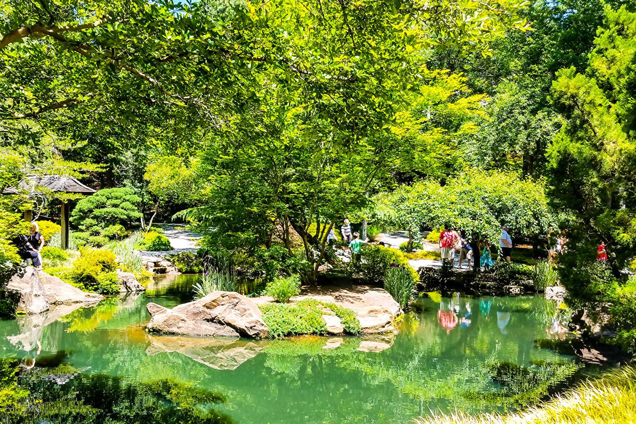 Фото штаты Gibbs Gardens Природа Пруд Парки Камень Деревья США Камни