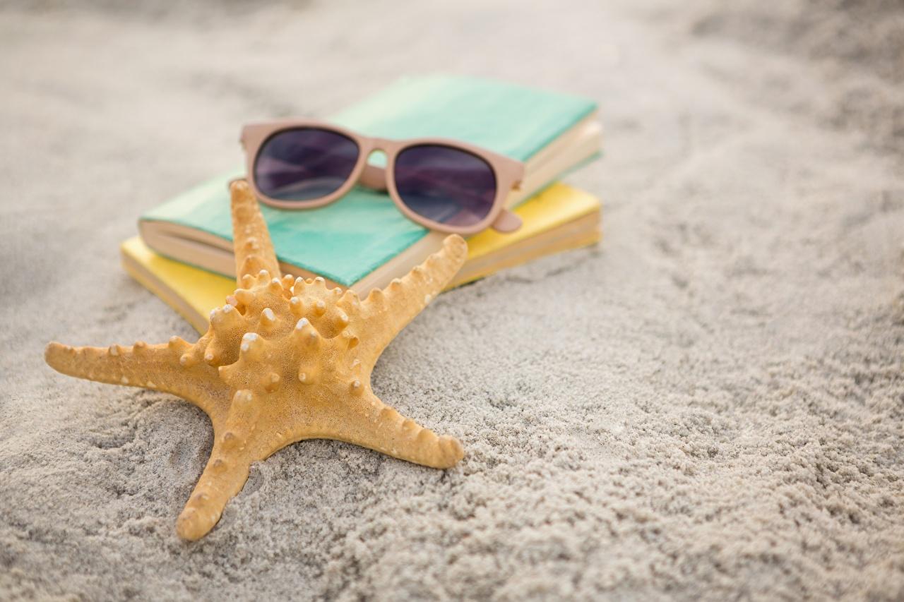 Фотографии Морские звезды песка очков Крупным планом Песок песке Очки очках вблизи