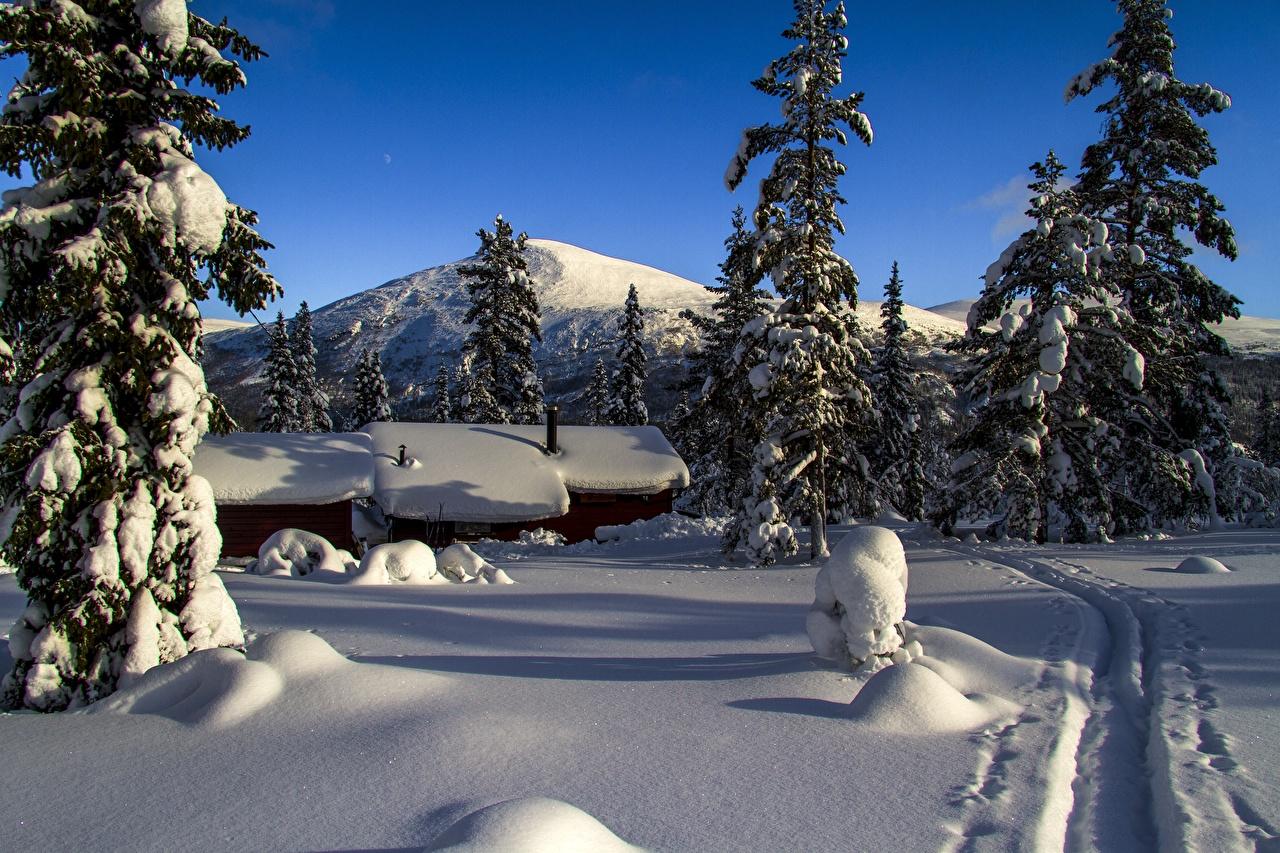 Фотографии Норвегия mountain Storkletten Ель гора Зима Тропа Природа снега Здания ели Горы тропы зимние тропинка Снег снеге снегу Дома