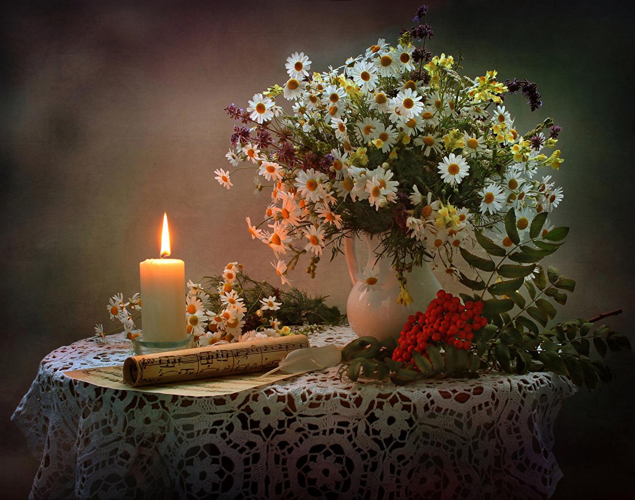 Фотографии Ноты Букеты Рябина Цветы ромашка столы Свечи Натюрморт букет цветок Ромашки Стол стола