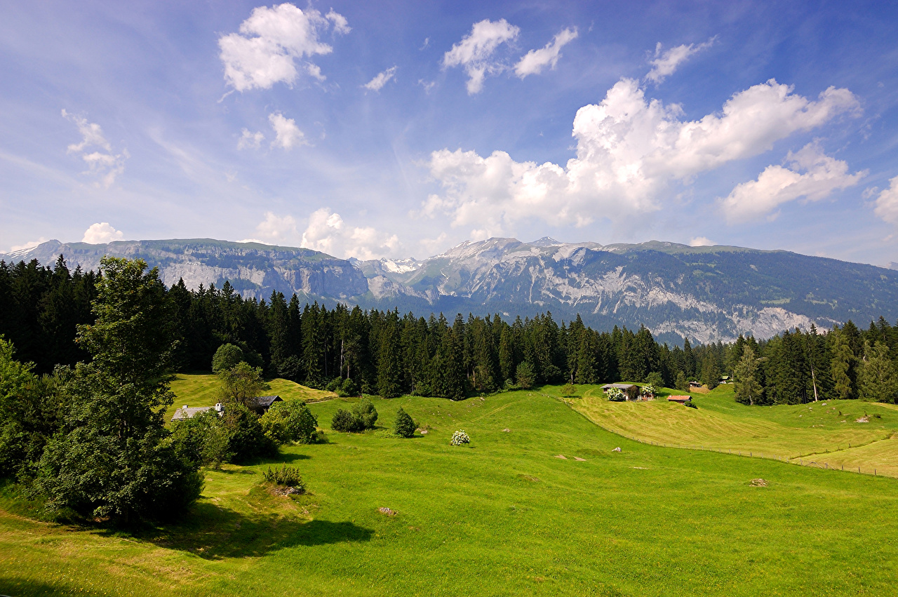 Фотография Швейцария Горы Природа Небо Луга Леса Пейзаж облако Облака облачно