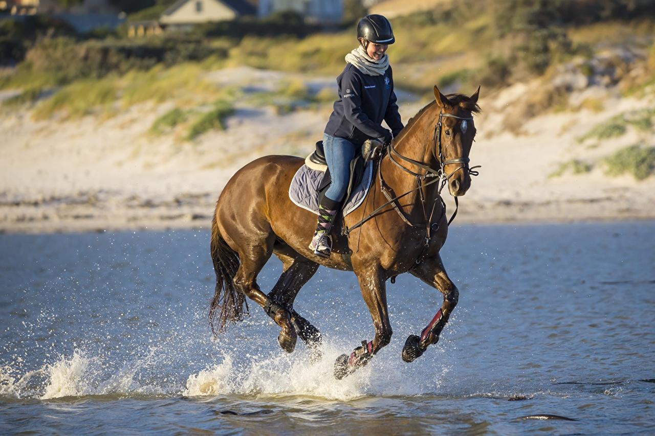 Картинки лошадь в шлеме Бег Девушки Конный спорт Брызги Сидит Животные Лошади Шлем шлема бежит бегущая бегущий девушка верховая езда молодая женщина молодые женщины с брызгами сидя сидящие животное