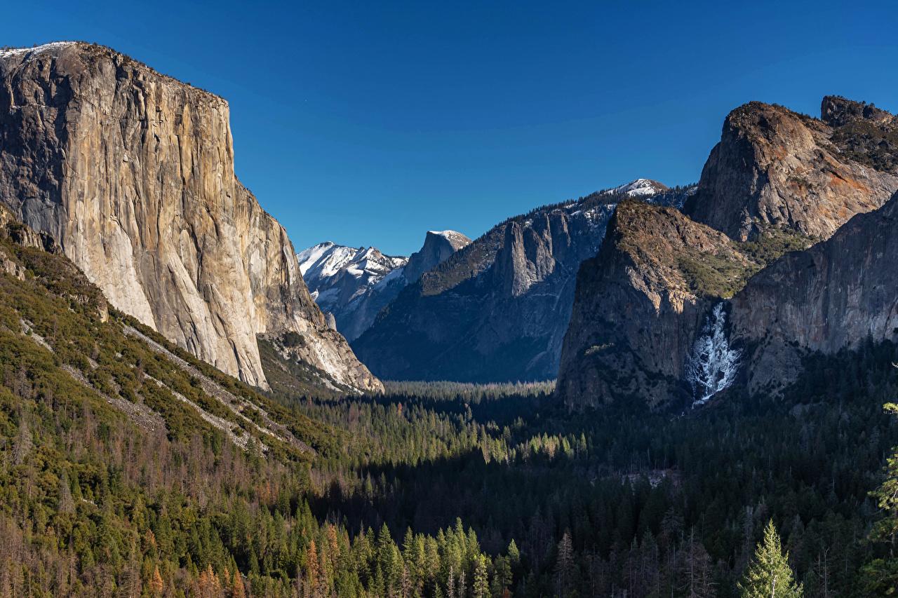 Картинка Йосемити США гора скале Природа лес Парки Пейзаж штаты америка Горы Утес скалы Скала Леса парк