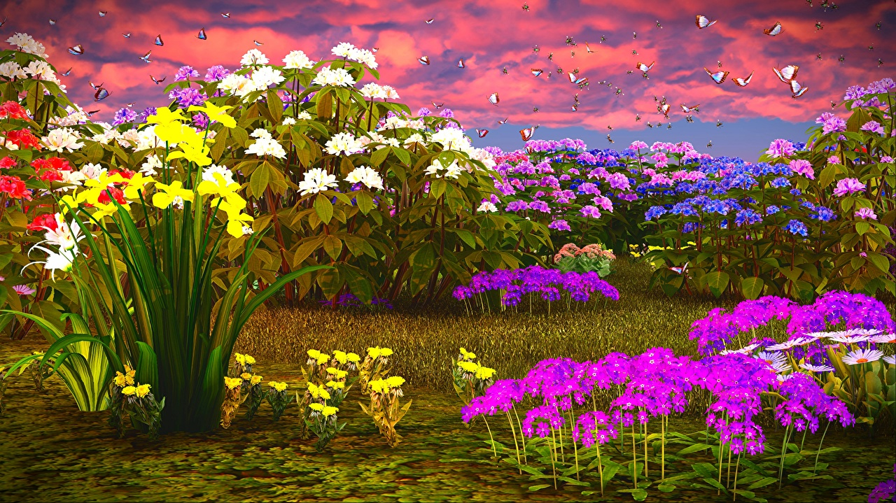 d25a31500a8 Картинки Флоксы Нарциссы Бабочки 3D Графика