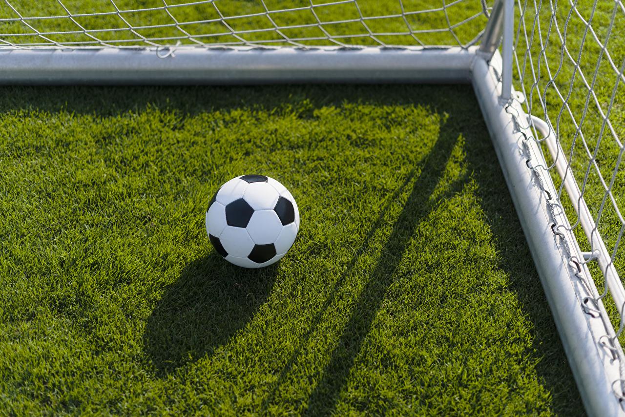 Картинки Спорт Футбол Мяч Газон