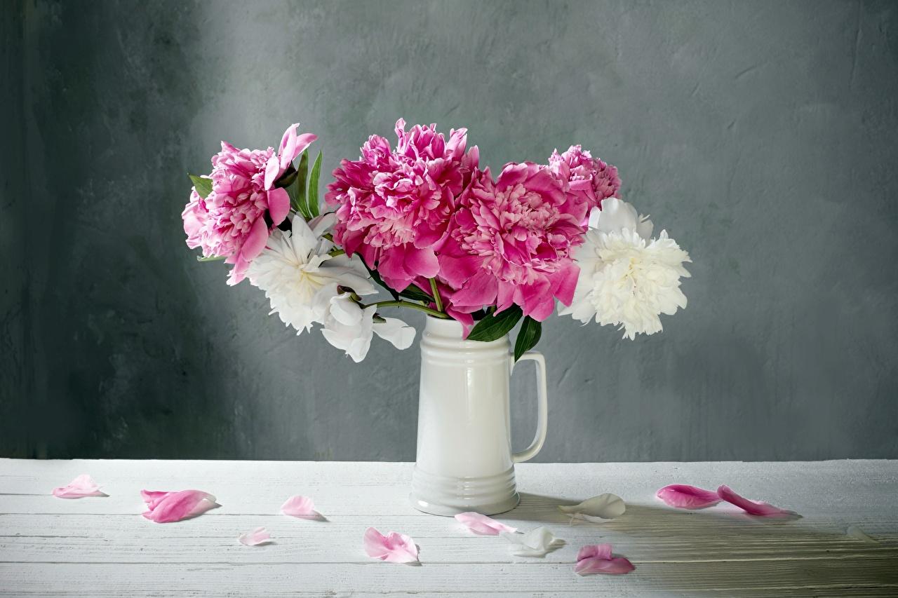 Фотографии Белый розовые Лепестки пион Цветы вазы белая белые белых розовая Розовый розовых лепестков Пионы цветок вазе Ваза