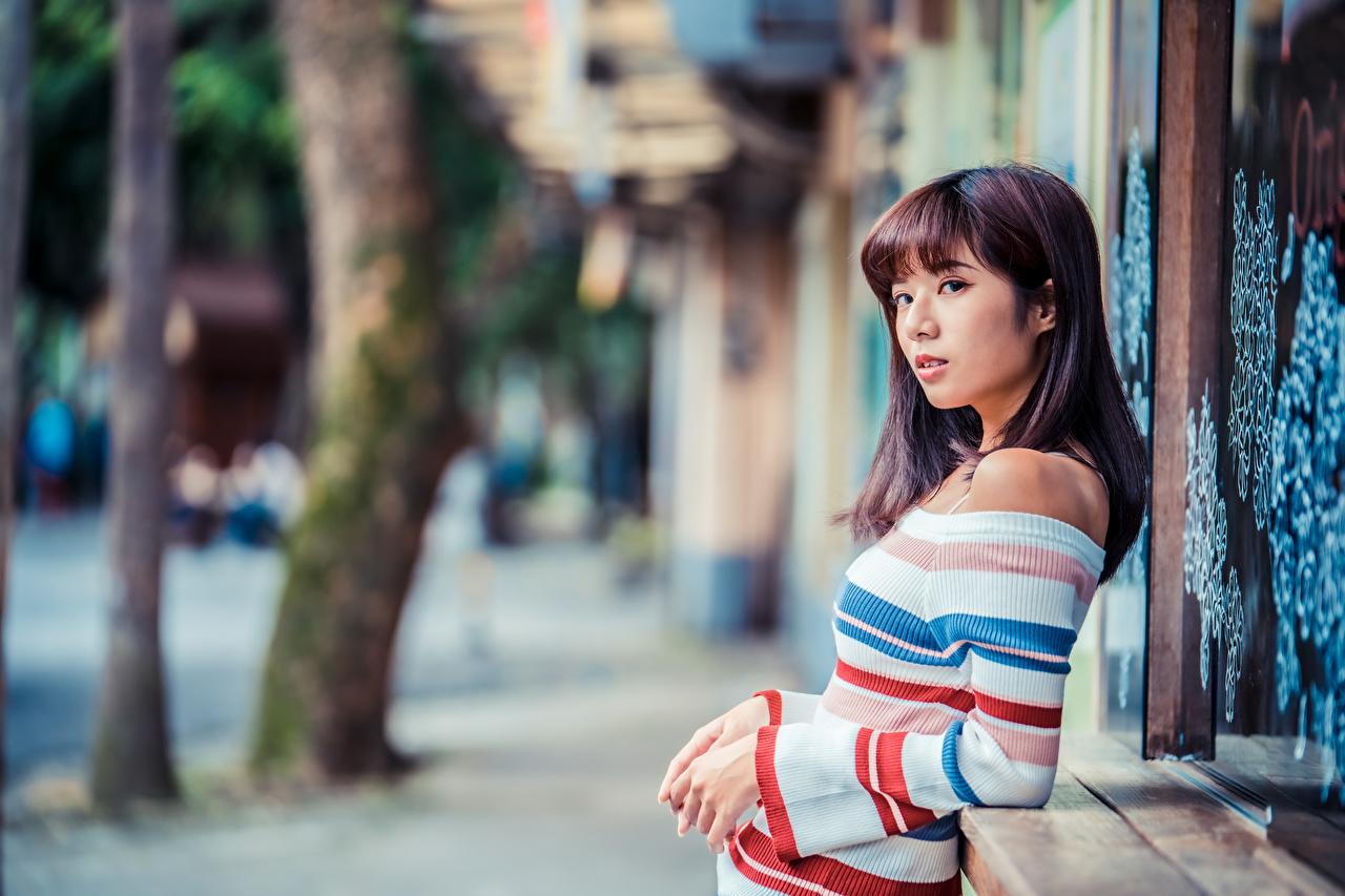 Фотография Размытый фон молодые женщины Свитер азиатка смотрит боке девушка Девушки молодая женщина Азиаты азиатки свитере свитера Взгляд смотрят