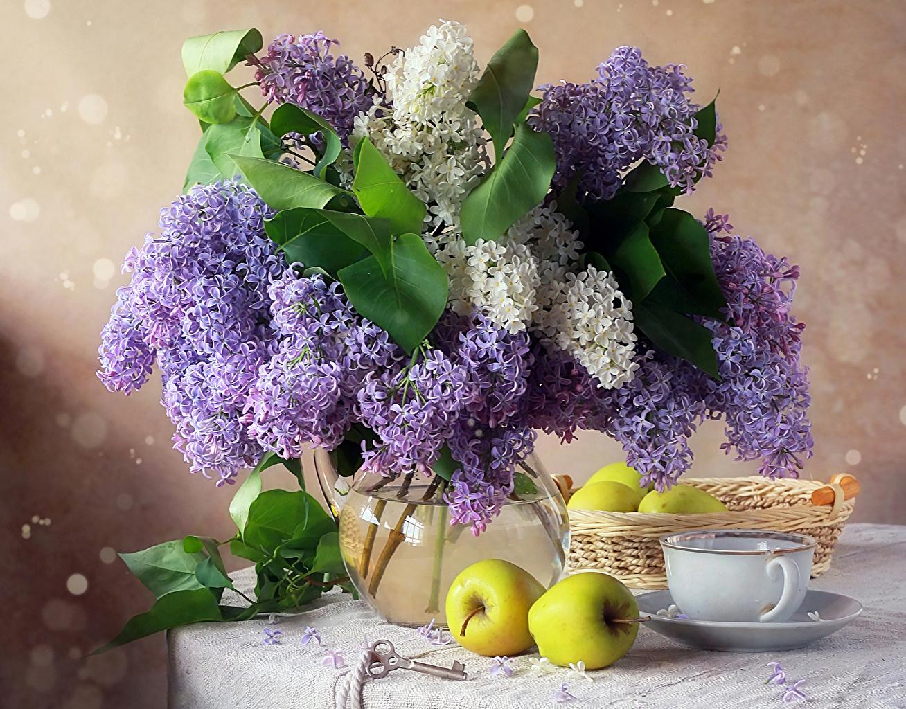 Натюрморт цветы обои на рабочий стол