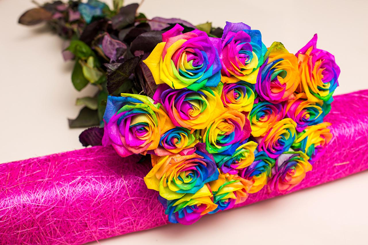 Фото Разноцветные Букеты роза цветок букет Розы Цветы