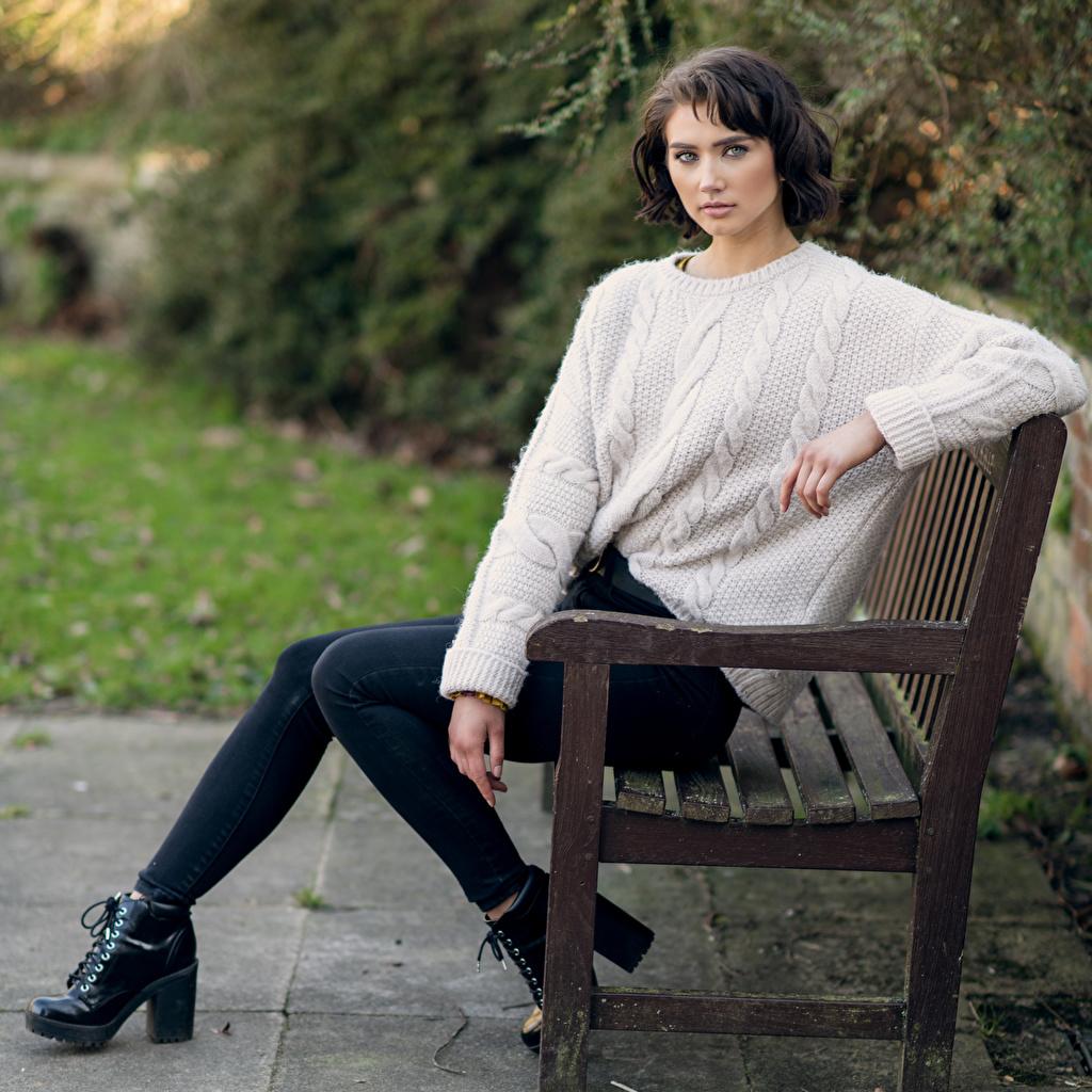 Фотографии Abigail девушка Свитер джинсов сидящие Скамейка Взгляд Девушки молодые женщины молодая женщина Джинсы свитера свитере сидя Сидит Скамья смотрят смотрит