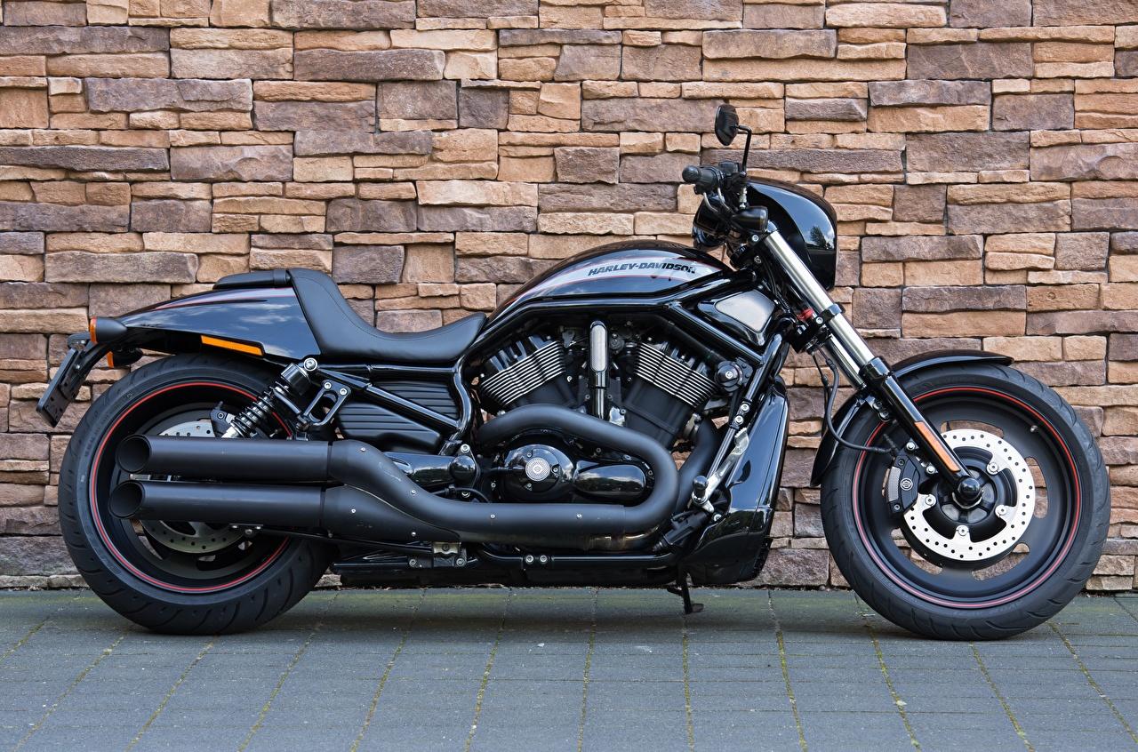 Обои для рабочего стола Xарлей дэвидсон VRSCDX, Night Rod черные Мотоциклы Сбоку стене Harley-Davidson черных Черный черная мотоцикл Стена стены стенка